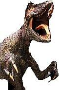 Swimming Raptor