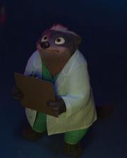 Dr Madge Honey Badger