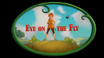Eye on the Fly