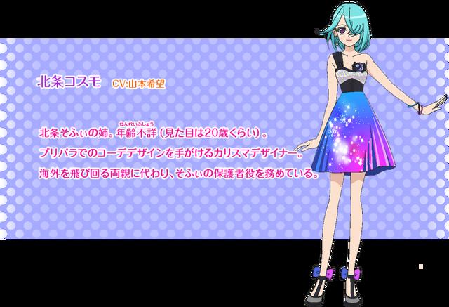 File:Pripara New Character 9.png