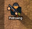 Guardia armado