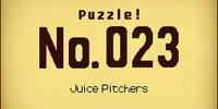 Juice Pitchers