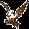 Eagle Talonflame