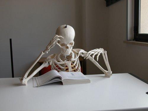 File:Studiare.jpg