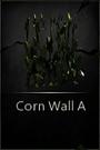 CornWallA