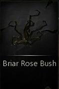 File:BriarRoseBush.png