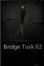BridgeTusk02