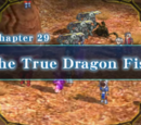 Chapter 29: The True Dragon Fist