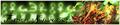 Thumbnail for version as of 04:19, May 31, 2011