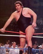 Andre the Giant11