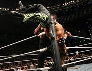 Royal Rumble 2007.45