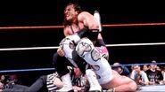 WrestleMania 12.20