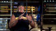 Hogan vs. Warrior 6
