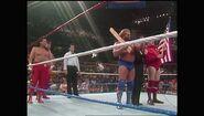 SummerSlam 1990.00037