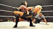 WWE WrestleMania Revenge Tour 2014 - Nottingham.8