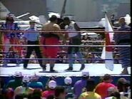 July 5, 1993 Monday Night RAW.00026