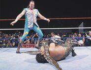 Royal Rumble 1996.6