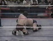 WWF The Wrestling Classic.00014