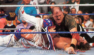Royal Rumble 1991.17