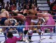 Royal Rumble 1988.5