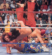 Royal Rumble 1991.15