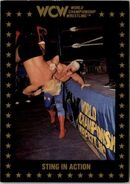 1991 WCW Collectible Trading Cards (Championship Marketing) Sting In Action 109