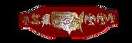 NWA US TITLE 1975-1982