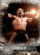 2017 WWE Road to WrestleMania Trading Cards (Topps) Triple H 15