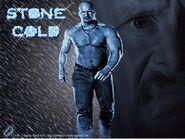 Stone Cold 22