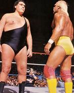 Hogan vs. Andre