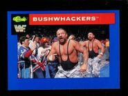 1991 WWF Classic Superstars Cards Bushwhackers 119