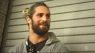 Seth Rollins (WWE Superstar Ink) 4