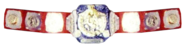 Wwwf-world tag 1982-1985