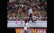 WrestleMania VIII.00002