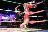 CMLL Martes Arena Mexico (April 26, 2016) 15