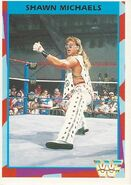 1995 WWF Wrestling Trading Cards (Merlin) Shawn Michaels 94