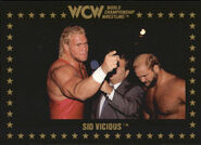 1991 WCW Collectible Trading Cards (Championship Marketing) Sid Vicious 18