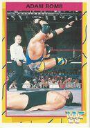 1995 WWF Wrestling Trading Cards (Merlin) Adam Bomb 98