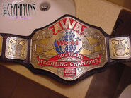 AWA World Tag Team Champion