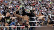 WrestleMania 33.14