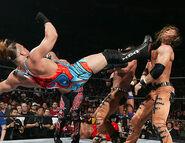 Royal Rumble 2006.7
