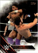2016 WWE (Topps) Then, Now, Forever Darren Young 113