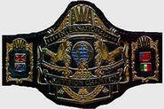 AWA International TV Champion