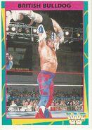 1995 WWF Wrestling Trading Cards (Merlin) British Bulldog 95