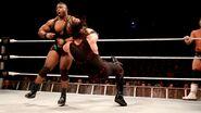 WrestleMania Revenge Tour 2013 - Dublin.11