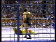 Wrestlefest 1988.00053