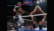 SummerSlam 1993.00015