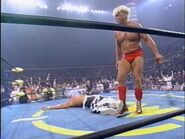 The Great American Bash 1995.00048