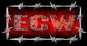 ECW Old Logo