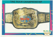 1995 WWF Wrestling Trading Cards (Merlin) Tag Team Title 45